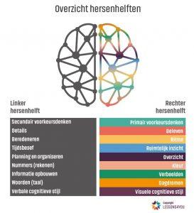 Overzicht hersenhelften - Beelddenkers hebben de voorkeur voor de rechterhersenhelft